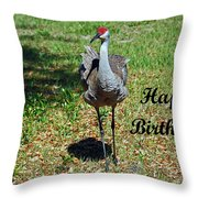 Sandhill Crane Birthday Throw Pillow