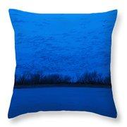 Sandhill Crane Blue Hour Throw Pillow