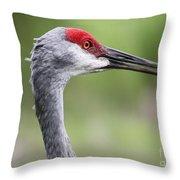 Sandhill Crane Closeup Throw Pillow
