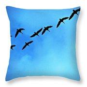 Sandhill Crane Flyover Throw Pillow
