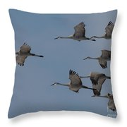 Sandhill Crane Group Throw Pillow