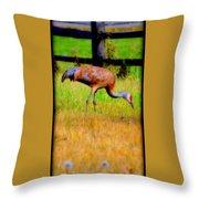 Sandhill Crane I Throw Pillow