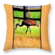 Sandhill Crane IIi Throw Pillow