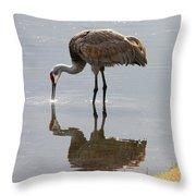 Sandhill Crane On Sparkling Pond Throw Pillow by Carol Groenen
