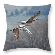 Sandhill Crane Pair 2 Throw Pillow