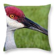 Sandhill Crane Portrait Throw Pillow