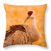 Sandhill Crane Posing Throw Pillow