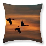 Sandhill Crane Sunset Throw Pillow