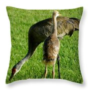 Sandhill Crane With Chick II Throw Pillow