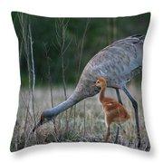 Sandhill Cranes 2 Throw Pillow