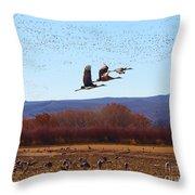 Sandhill Cranes 6 Throw Pillow