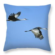 Sandhill Cranes Flying Bosque Del Apache Throw Pillow