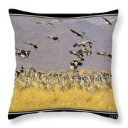 Sandhill Cranes On The Ground Throw Pillow