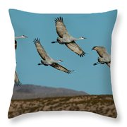 Sandhill Cranes Over Chupadera Mountains Throw Pillow
