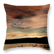Sandhill Cranes Roosting At Sunset Throw Pillow