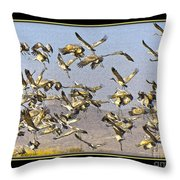 Sandhill Cranes Startled 2 Throw Pillow