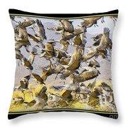 Sandhill Cranes Startled Throw Pillow