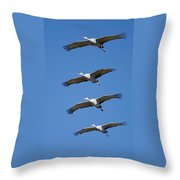 Sandhill In Fromation Throw Pillow