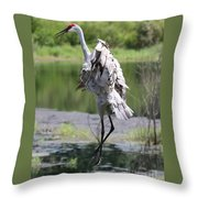 Sandhill Jumping Throw Pillow