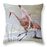 Sandhill Leap Of Faith Throw Pillow