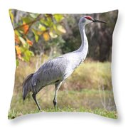 Sandhill Passing By Throw Pillow