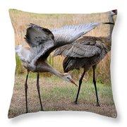 Sandhill Stretch Throw Pillow