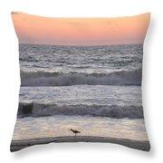 Sandpiper At Sunrise Throw Pillow