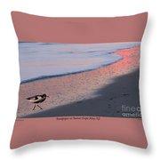 Sandpiper At Sunset Print Throw Pillow