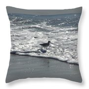 Sandpiper In The Surf Throw Pillow