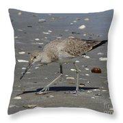 Sandpiper Throw Pillow