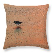 Sandpiper On Shoreline Throw Pillow