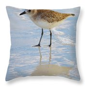 Sandpiper Reflection Throw Pillow