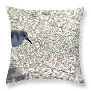 Sandpiper Reflections II Throw Pillow