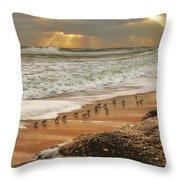 Sandpiper Sunrise Throw Pillow