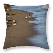 Sandpipers 2 Throw Pillow