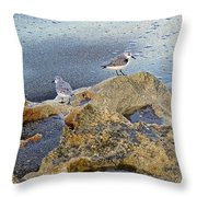 Sandpipers On Coral Beach Throw Pillow