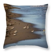 Sandpipers 3 Throw Pillow