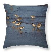Sandpipers 5 Throw Pillow