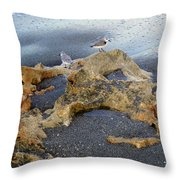 Sandpipers 1 Throw Pillow