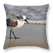 Sandpipers Secrets Throw Pillow