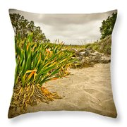 Sands And Grass Of Elafonisi Throw Pillow
