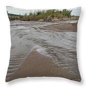 Sands Dunes National Park Throw Pillow