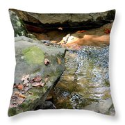 Sandstone Boulders At Hurricane Branch Throw Pillow