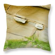 Sandstone Color Spectrum Throw Pillow