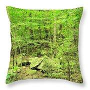 Sandstone Glade Of Shades Mountain Throw Pillow