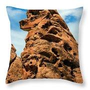 Sandstone Husky Throw Pillow