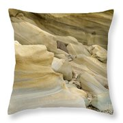 Sandstone Sediment Smoothed And Rounded By Water Throw Pillow