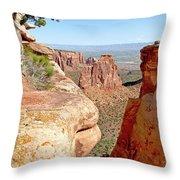 Sandstone Smile Throw Pillow