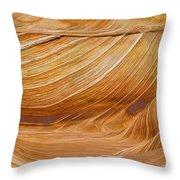 Sandstone Swirls Throw Pillow