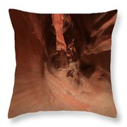Sandstone Twists And Turns Throw Pillow